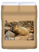 Yellow Bellied Marmot Checking Out The Neighborhood In Rocky Mountain National Park Duvet Cover