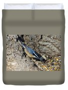 Yellow Bellied Nuthatch Duvet Cover