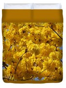 Yellow Blossoms Of A Tabebuia Tree Duvet Cover