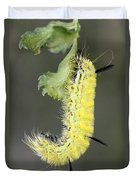 Yellow Caterpillar 1 Duvet Cover