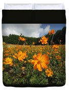 Yellow Cosmos Field In Flower Japan Duvet Cover