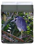 Yellow Crowned Night-heron Duvet Cover