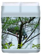 Yellow Crowned Night Heron Duvet Cover