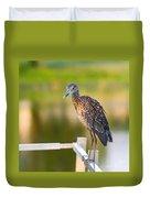 Yellow-crowned Night-heron Portrait Series 3 Duvet Cover