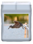 Yellow-crowned Night-heron Portrait Series 7 Duvet Cover