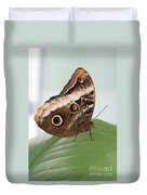 Yellow-edged Giant Owl Butterfly #3 Duvet Cover