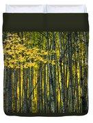 Yellow Fall Birch Leaves Against An Duvet Cover