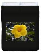 Yellow Flower Of Golden Trumpet Vine Duvet Cover