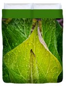 Yellow Green Skunk Cabbage Square Duvet Cover