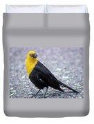 4m09157-02-yellow Headed Blackbird Duvet Cover