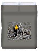 Yellow-headed Blackbird Duvet Cover