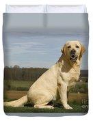 Yellow Labrador Dog Duvet Cover