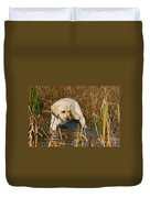 Yellow Labrador Retriever Puppy Standing In Water Duvet Cover