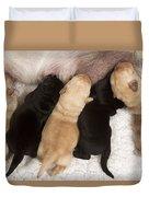 Yellow Labrador Suckling Puppies Duvet Cover