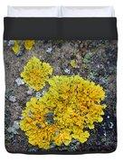 Yellow Lichen Duvet Cover