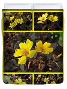 Yellow Oxalis - Oxalis Spiralis Vulcanicola Duvet Cover