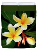 Yellow Plumeria Duvet Cover by Ben and Raisa Gertsberg