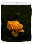 Yellow Rose Dapples With Waterdfrops Duvet Cover