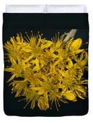 Yellow Sedum Duvet Cover