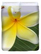 Yellow Star Plumeria Duvet Cover