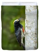 Yellow-tufted Woodpecker Duvet Cover