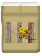 Yellow Warbler Pictures 90 Duvet Cover