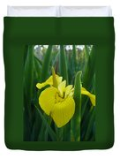 Yellow Water Iris Duvet Cover