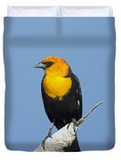 Yellowheaded Blackbird Duvet Cover