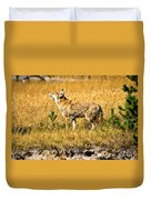 Yellowstone Coyote Duvet Cover