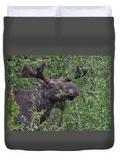 Yellowstone Munching Moose Duvet Cover
