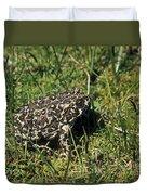 Yosemite Toad Bufo Canorus Duvet Cover