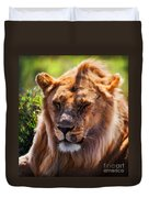 Young Adult Male Lion Portrait. Safari In Serengeti Duvet Cover