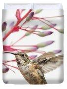 Young Allen's Hummingbird Duvet Cover