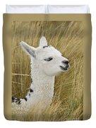 Young Alpaca Duvet Cover