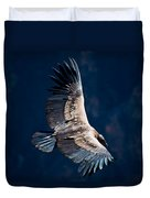 Young Andean Condor Duvet Cover