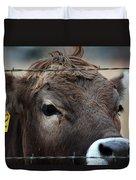Young Braunvieh Bull Duvet Cover