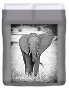 Young Bull Elephant Duvet Cover