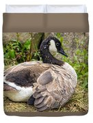 Young Canada Goose Duvet Cover