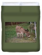 Young Donkey Eating Duvet Cover