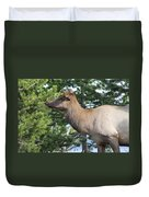 Young Elk Duvet Cover