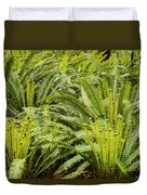 Young Fiddleheads Duvet Cover