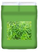 Young Goldenrod Before Blossoms Duvet Cover