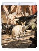Young Kangaroo Duvet Cover