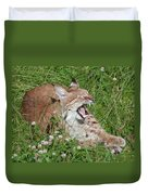 Young Lynx Yawning Duvet Cover
