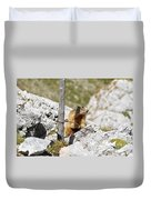 Young Marmot Duvet Cover