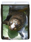 Young Mill Lake Frog Duvet Cover