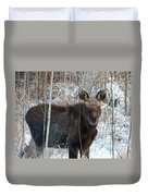 Young Moose 3 Duvet Cover