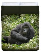 Young Mountain Gorilla Duvet Cover