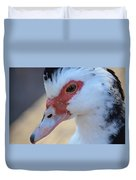 Young Muscovy Closeup Duvet Cover