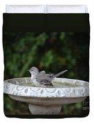 Young Northern Mockingbird In Bird Bath Duvet Cover
